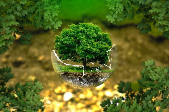 Le Grand Paris et l'environnement