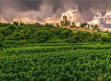 Investissement locatif Bordeaux
